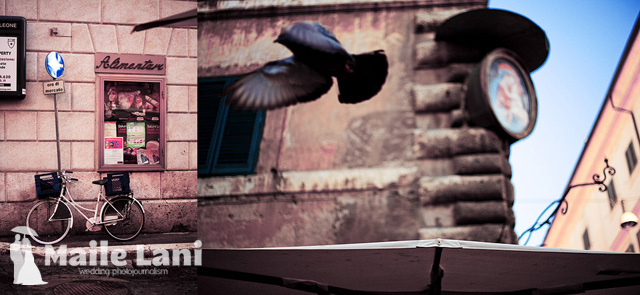 Rome: Pigeon and Bicycle
