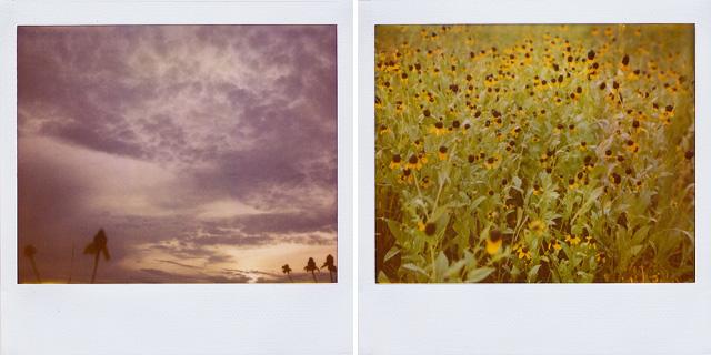 Polaroid Spectra • Gonzales Louisiana