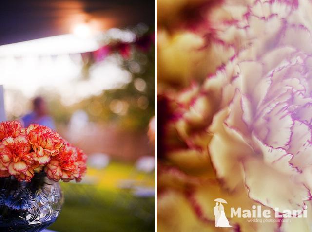 Brandy & Chris • Colorful Wedding Photographs