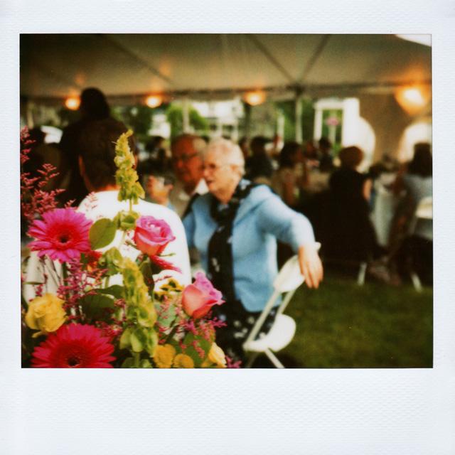 Polaroid Wedding Photographs