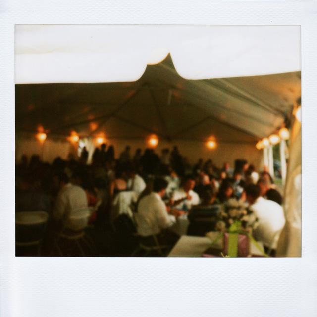 Polaroid Wedding Reception