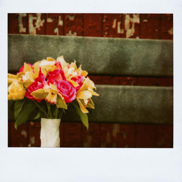 Polaroid Wedding Pictures