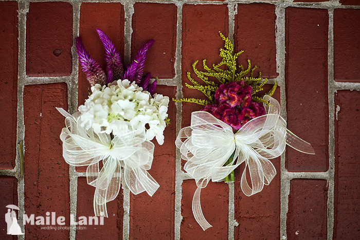 06_city_park_wedding_new_orleans_carousel