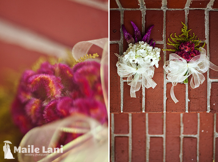 07_city_park_wedding_new_orleans_carousel