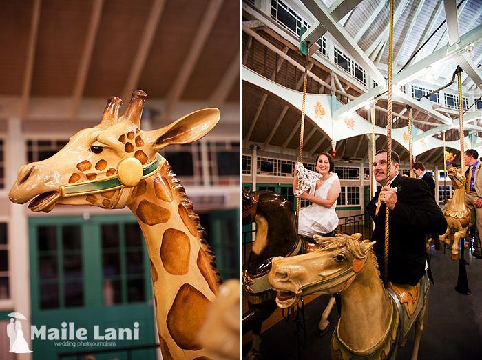 30_city_park_wedding_new_orleans_carousel