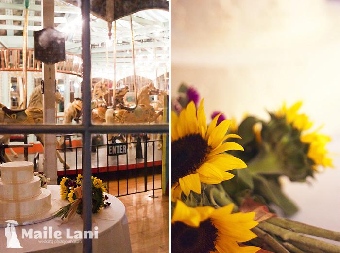 40_city_park_wedding_new_orleans_carousel
