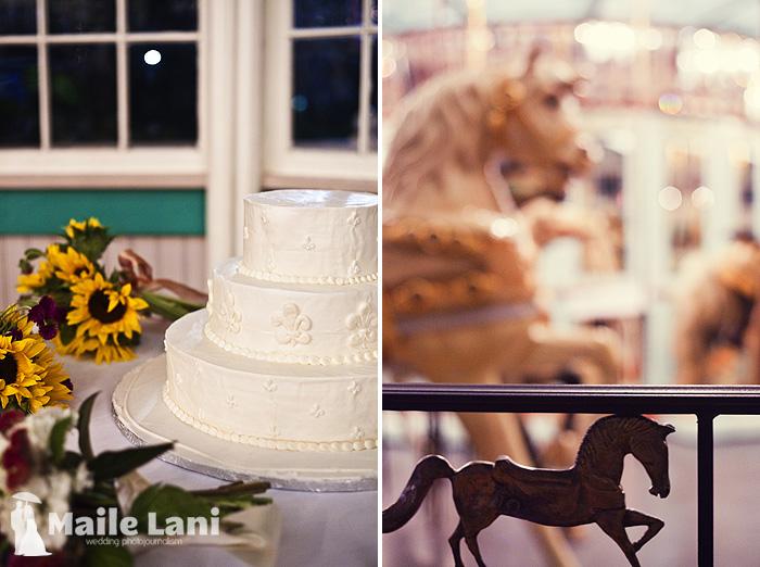41_city_park_wedding_new_orleans_carousel