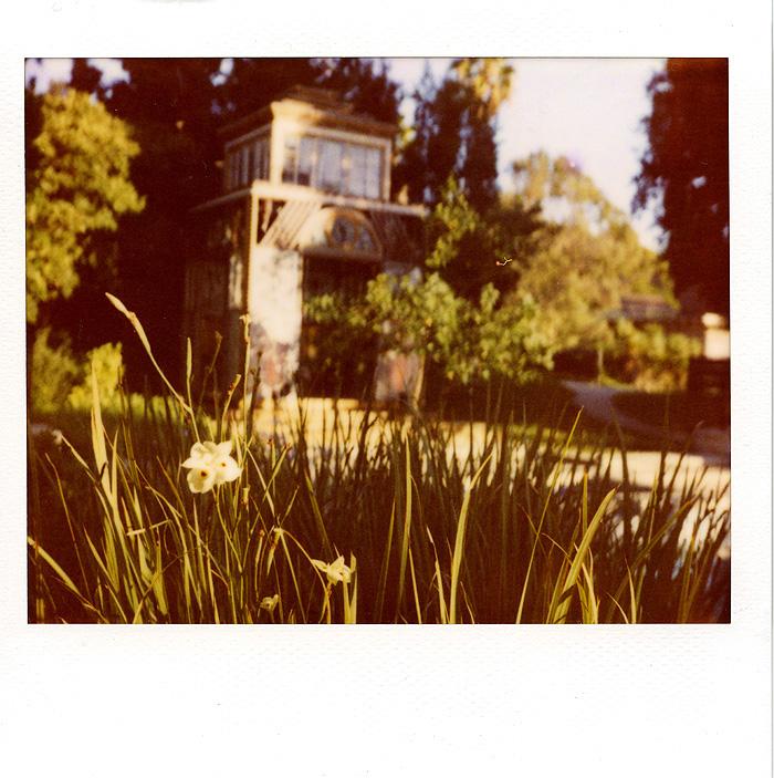 041_polaroid_wedding_photography_culver_city
