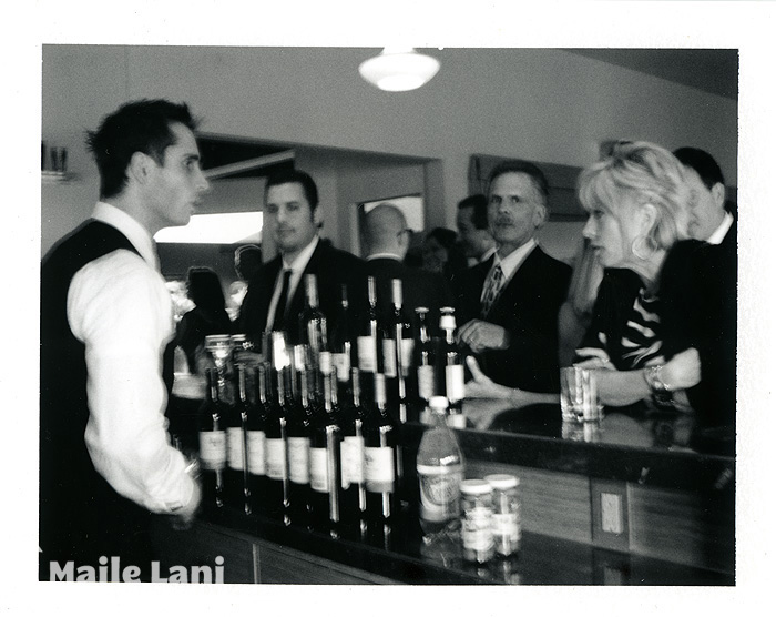 076_polaroid_wedding_photographs
