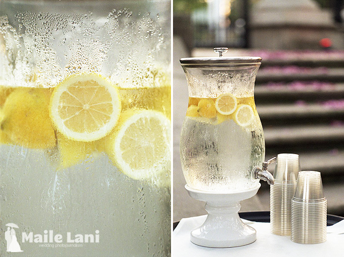 Audubon Zoo Wedding Lemon Water