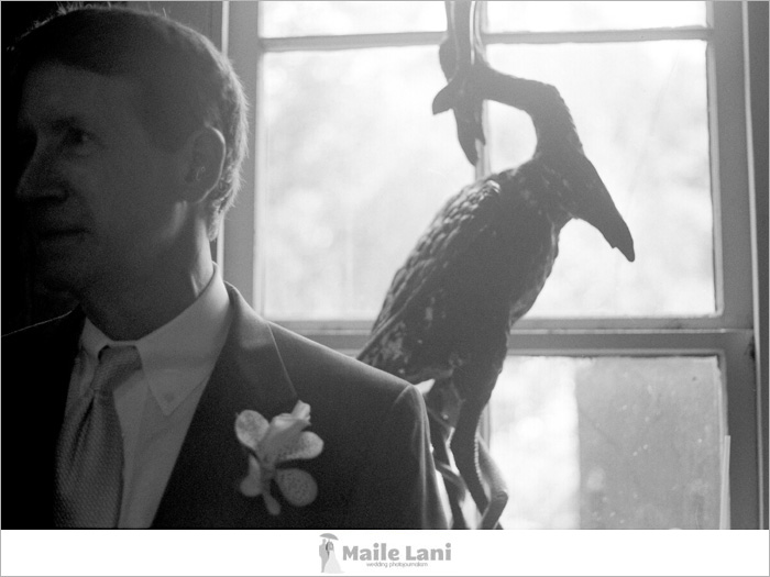 004_houmas_house_wedding