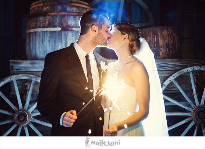 Sparkler Wedding Bride Groom