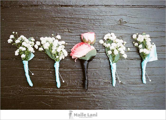 15_nola_flora_flowers