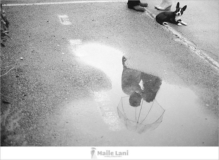 06_buffalo_new_york_engagement_photographs