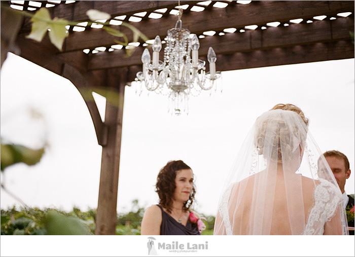 becker_farms_vizcarra_vineyards_wedding_12