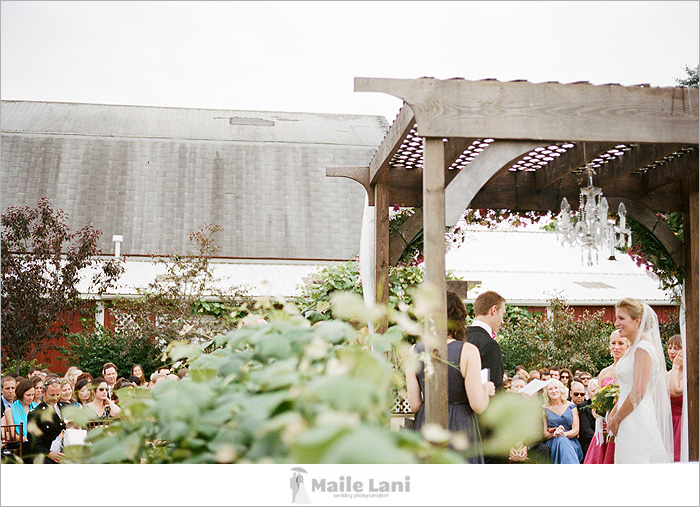 becker_farms_vizcarra_vineyards_wedding_13