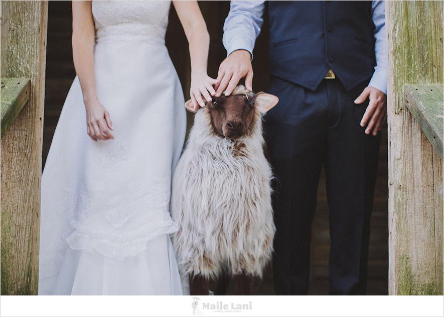 26_destrehan_plantation_wedding