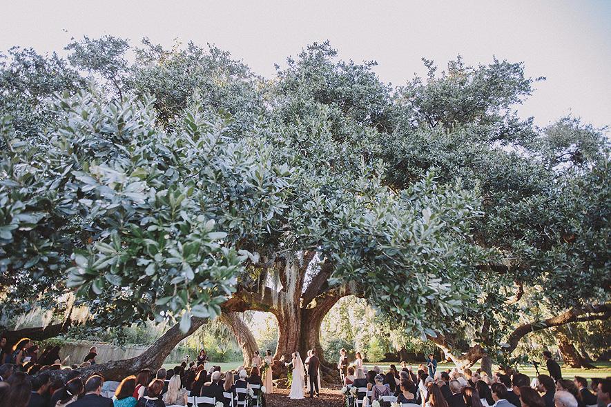 14_audubon_tea_room_wedding