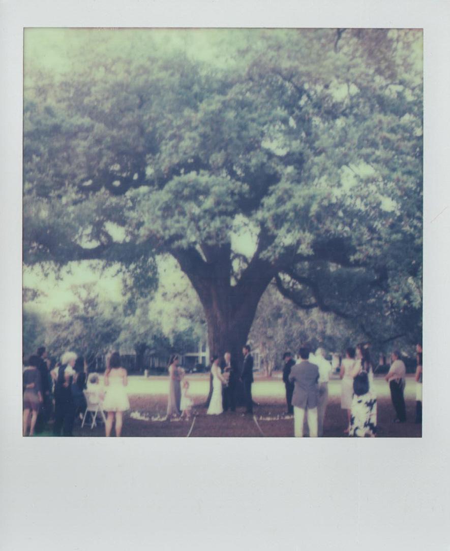 52_backyard_wedding_photography