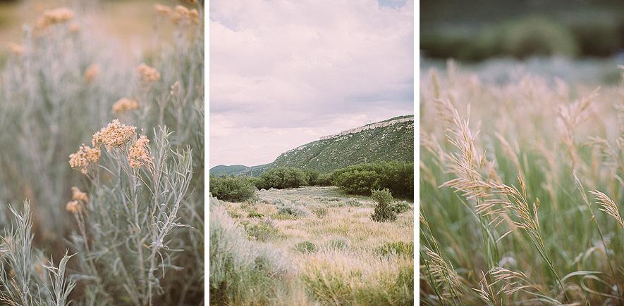 006_mesa_verde_national_park