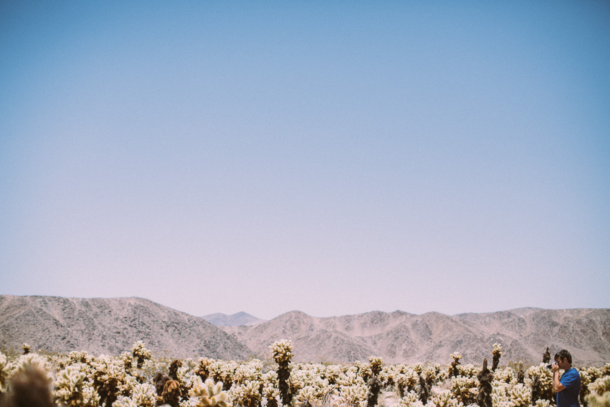 012_joshua_tree_national_park