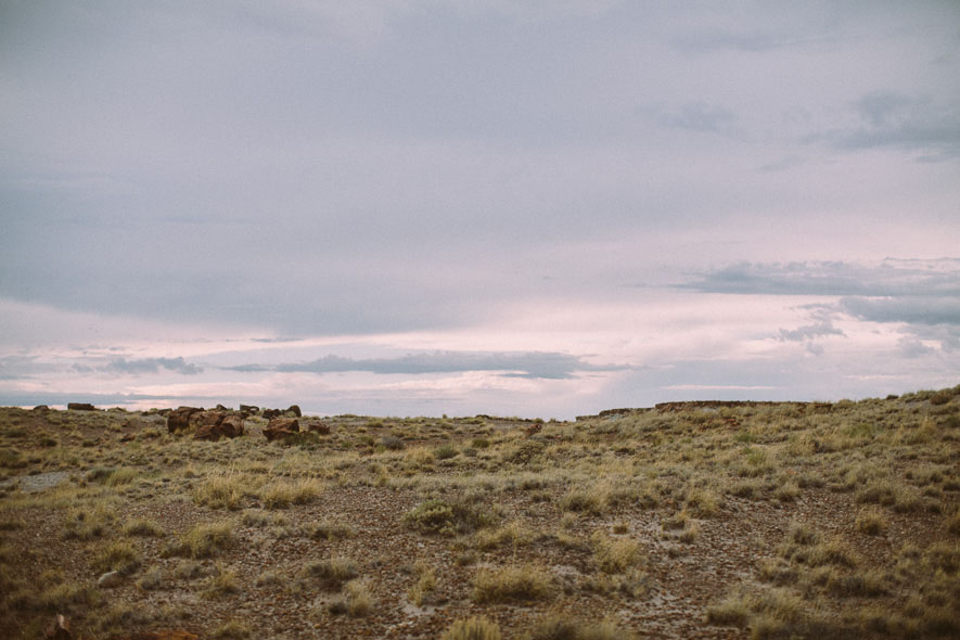 012_petrified_forest_national_park