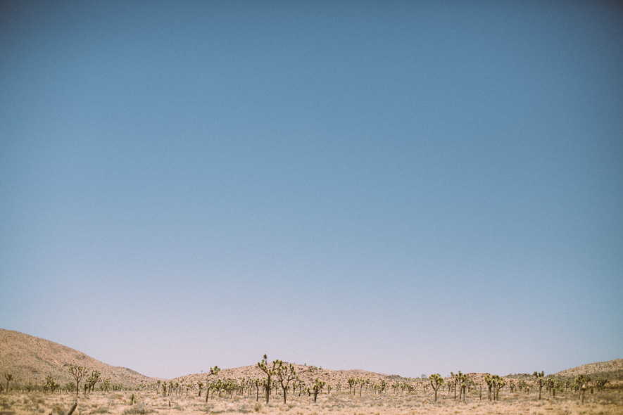 020_joshua_tree_national_park