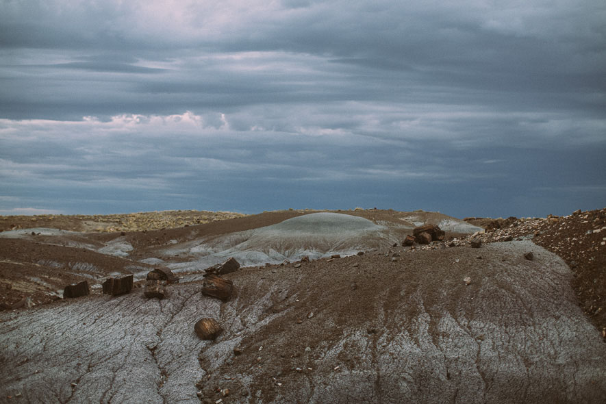 022_petrified_forest_national_park