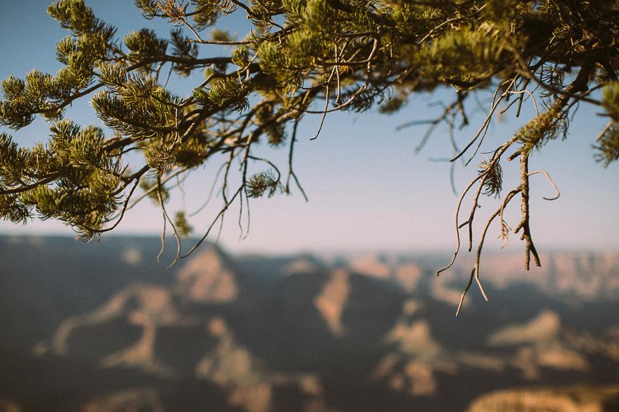 024_grand_canyon_national_park