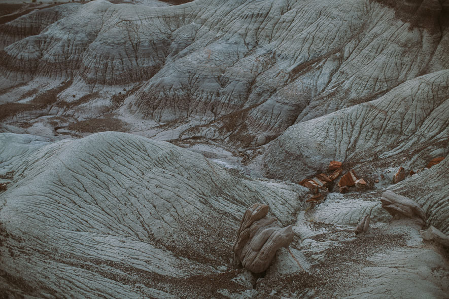 030_petrified_forest_national_park