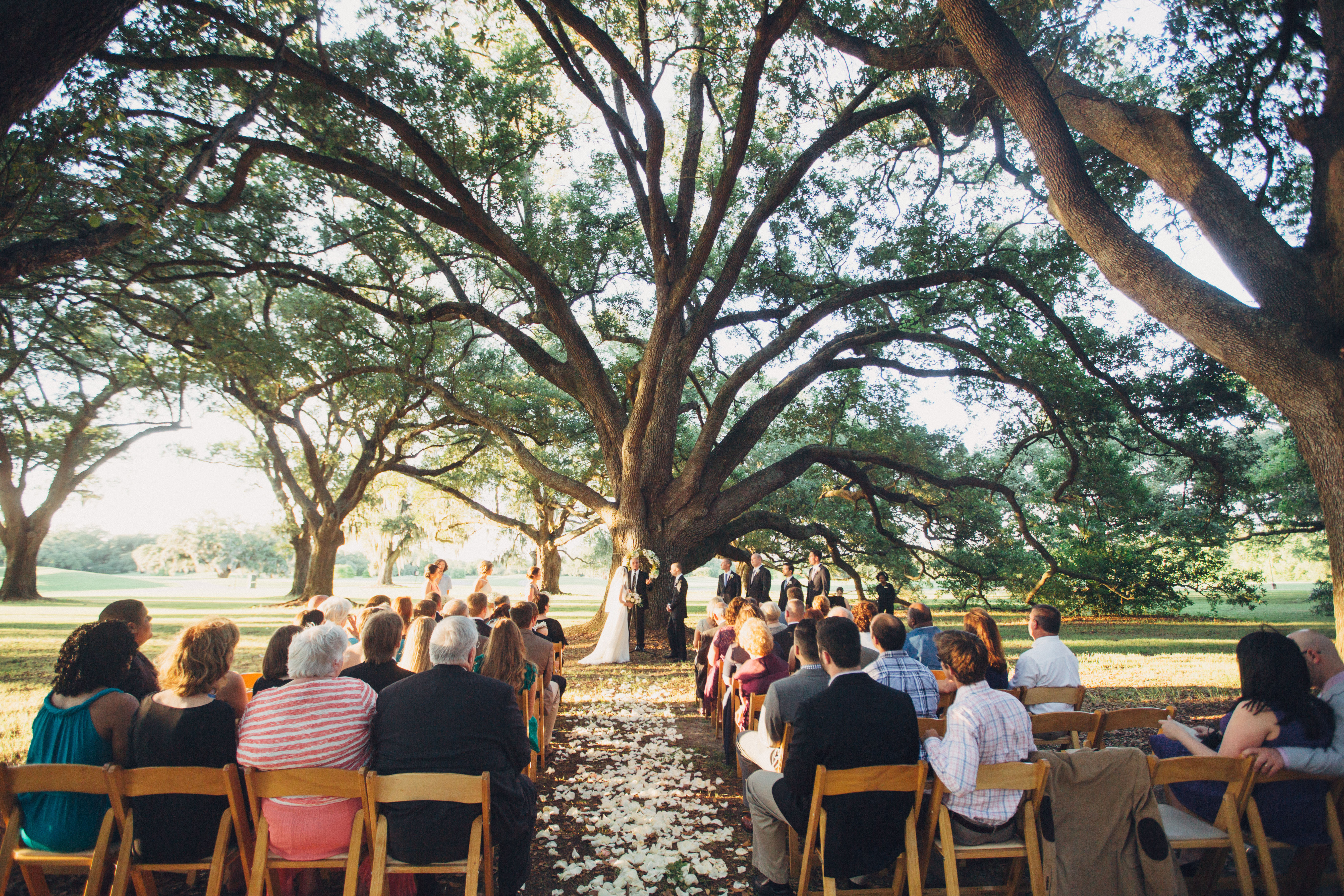 042_audubon_clubhouse_cafe_wedding_new_orleans
