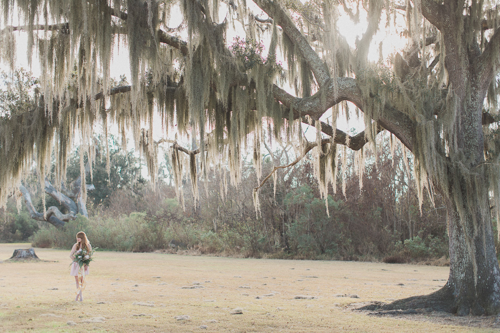 Spanish Moss Wedding Pictures