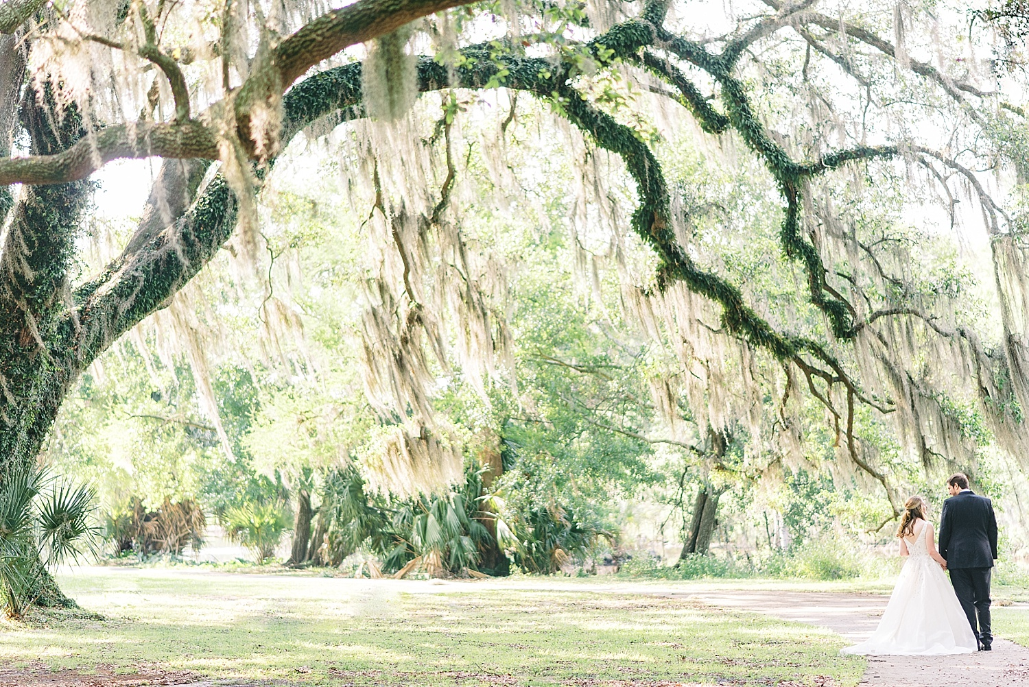 City Park Wedding Photos Spanish Moss